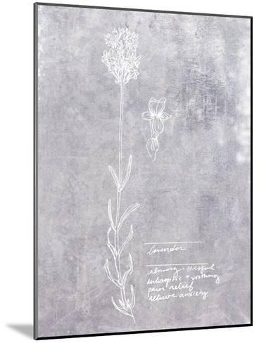 Essential Botanicals II-Jarman Fagalde-Mounted Art Print