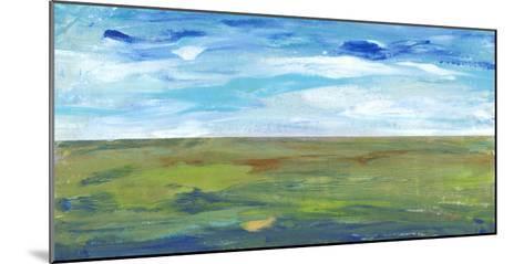 Vast Land II-Tim O'toole-Mounted Art Print