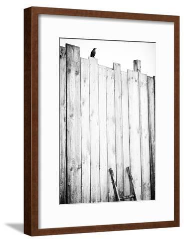 freed-J?rgen Hartlieb-Framed Art Print