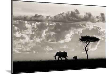 Silhouettes of Mara-Mario Moreno-Mounted Art Print