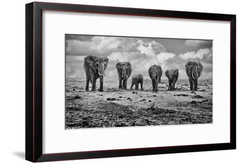 Big Family-Marcel Rebro-Framed Art Print