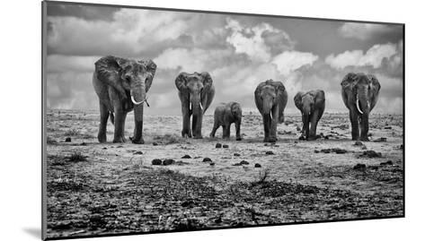 Big Family-Marcel Rebro-Mounted Art Print