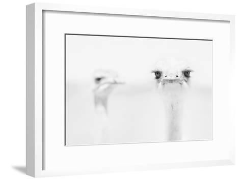 A°A°A°-Carlo Tonti-Framed Art Print