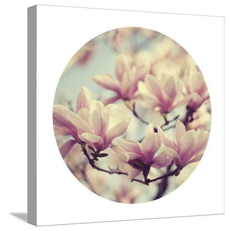 Spring Dream - Sphere-Irene Suchocki-Stretched Canvas Print