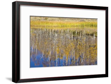 Chriss Lake-Don Paulson-Framed Art Print