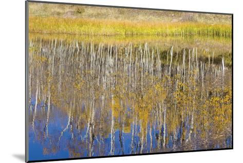 Chriss Lake-Don Paulson-Mounted Giclee Print