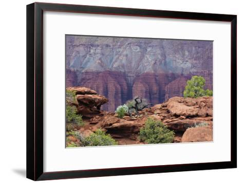 View from Sunset Point-Don Paulson-Framed Art Print