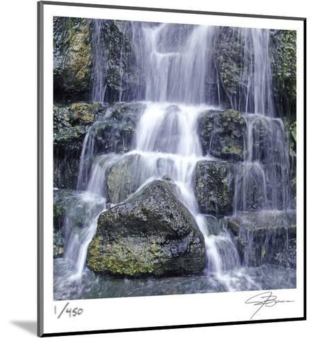 Austin Falls-Ken Bremer-Mounted Limited Edition