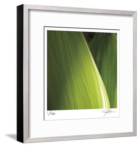 Palm Blades-Ken Bremer-Framed Art Print