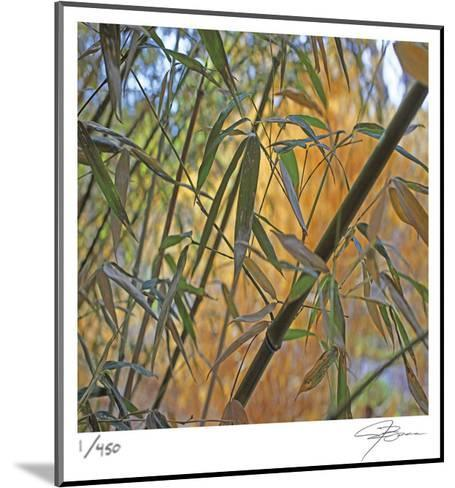 Bamboo-Ken Bremer-Mounted Limited Edition
