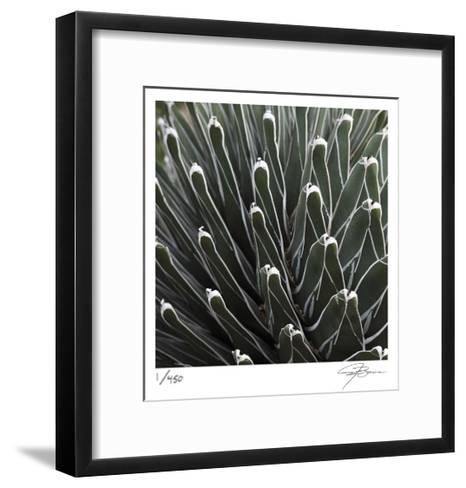 Cactus 34-Ken Bremer-Framed Art Print