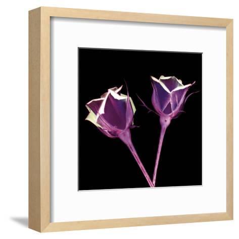 Electric Flowers No. 1-Mark Baker-Framed Art Print