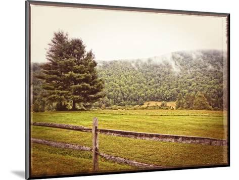 Morning Mountain Smoke Vintage-Suzanne Foschino-Mounted Art Print