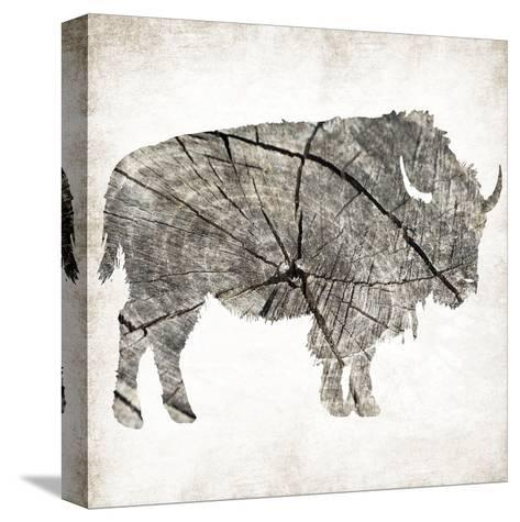 Buffalo Rings Mineral-Jace Grey-Stretched Canvas Print