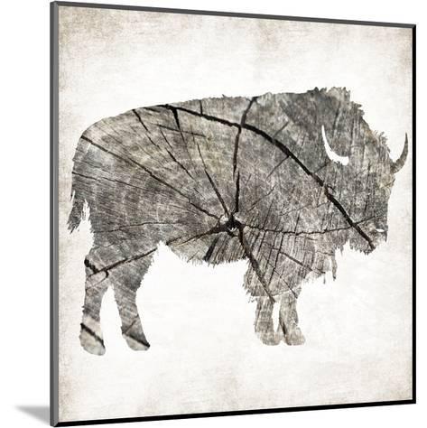Buffalo Rings Mineral-Jace Grey-Mounted Art Print