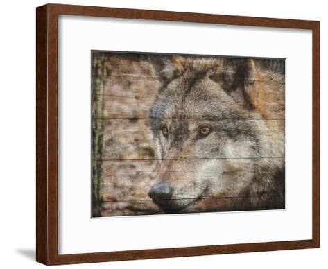 Alfa Wolf 2-Sheldon Lewis-Framed Art Print