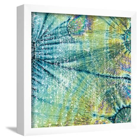Distressed Coconuts-Melody Hogan-Framed Art Print