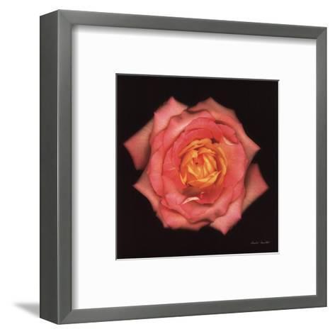 Illumination-Harold Feinstein-Framed Art Print