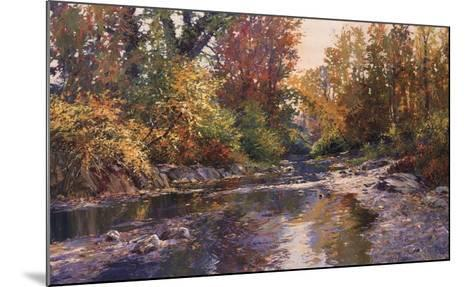 PEACEFUL SHOALS-Connie Boswell-Mounted Art Print