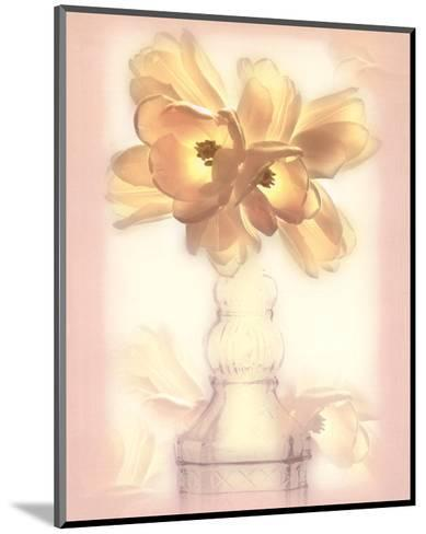 Lovely Tulip-Donna Geissler-Mounted Art Print