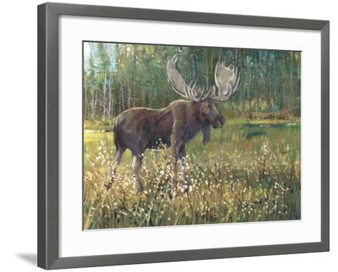 Moose in the Field-Tim O'toole-Framed Art Print