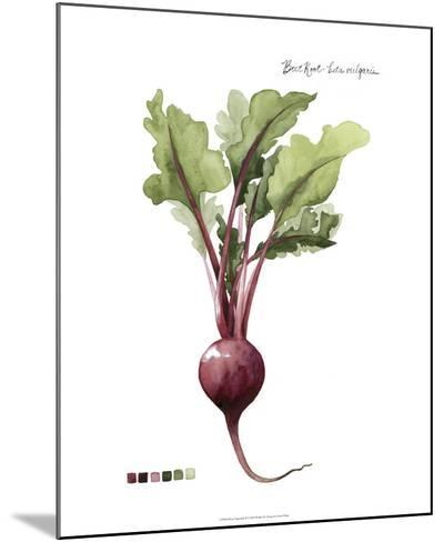 Root Vegetable II-Grace Popp-Mounted Giclee Print