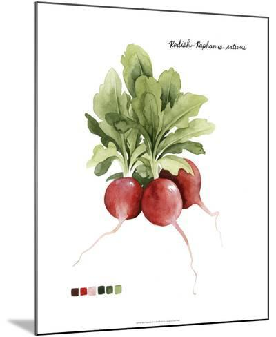 Root Vegetable IV-Grace Popp-Mounted Giclee Print