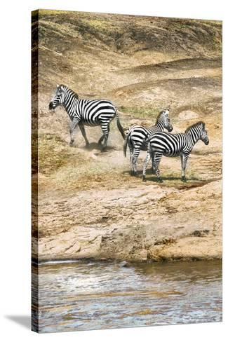 African Plains VII-Golie Miamee-Stretched Canvas Print