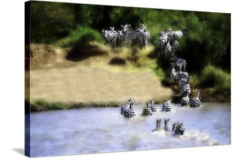 African Plains IX-Golie Miamee-Stretched Canvas Print