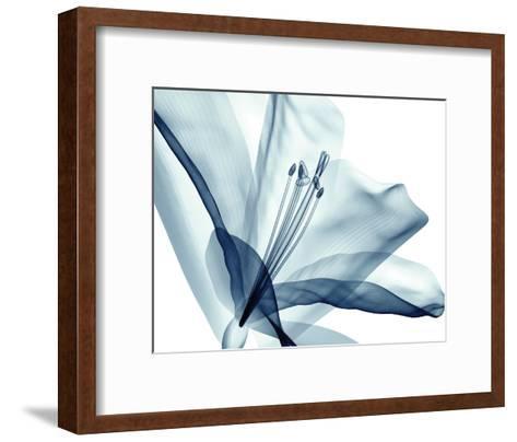 Transparent Floral Beauty--Framed Art Print