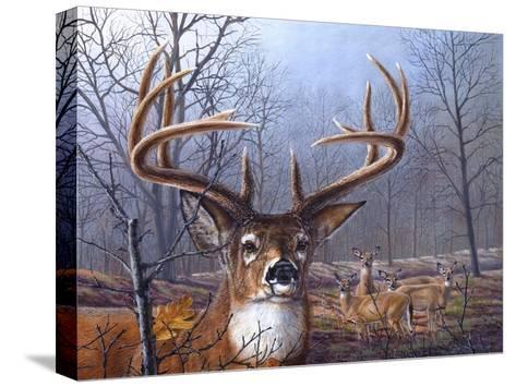 Morning Mist-Carolyn Mock-Stretched Canvas Print