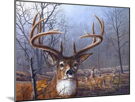 Morning Mist-Carolyn Mock-Mounted Art Print
