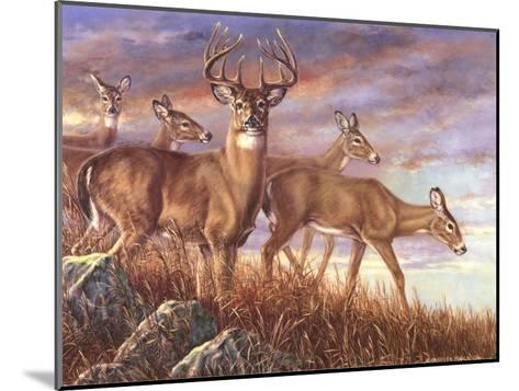 Evening Gold-Carolyn Mock-Mounted Art Print