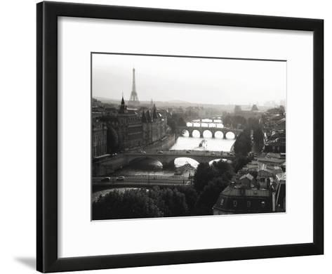 Bridges over the Seine river, Paris-Michel Setboun-Framed Art Print