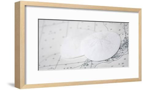 Nautical sand dollars-Savanah Plank-Framed Art Print
