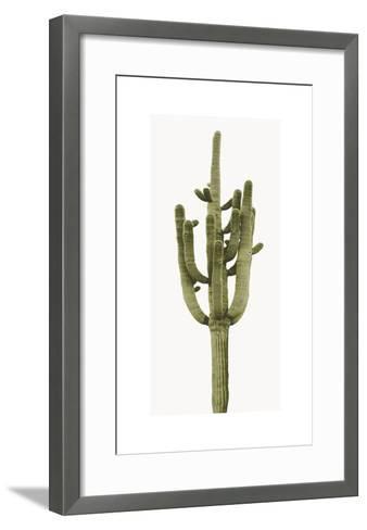 Saguaro II-Mia Jensen-Framed Art Print