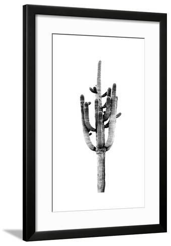 Saguaro Black & White II-Mia Jensen-Framed Art Print