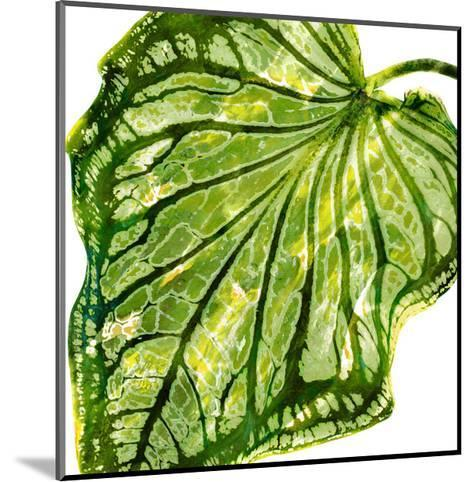 Tropical Palm III-Melonie Miller-Mounted Giclee Print