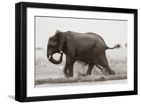 Ploughing Through--Framed Art Print