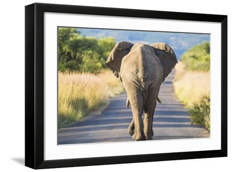 Follow the Leader--Framed Art Print