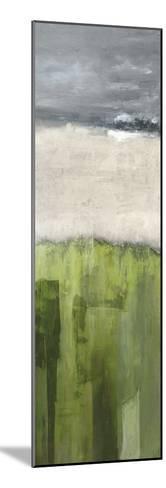 Strata - Colorado--Mounted Giclee Print