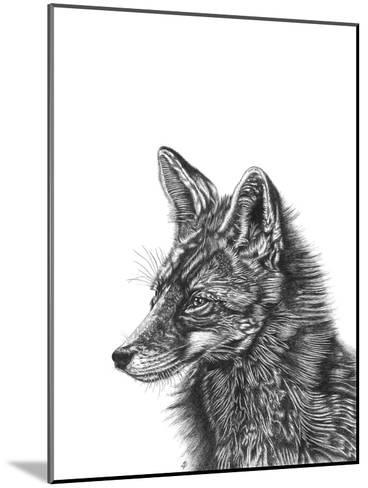 Fox--Mounted Giclee Print
