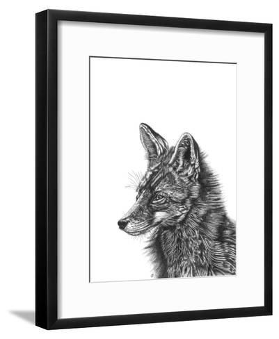 Fox--Framed Art Print