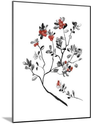 Lingonberry Branch--Mounted Giclee Print