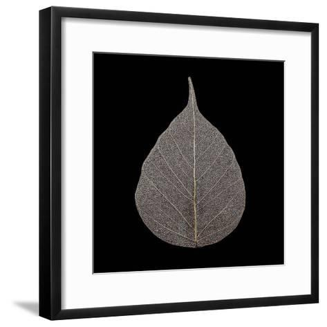 Brown Leaf-PhotoINC Studio-Framed Art Print