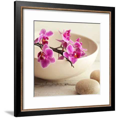 Zen Pebble-PhotoINC Studio-Framed Art Print