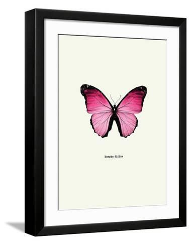 Pink Butterfly-GraphINC-Framed Art Print