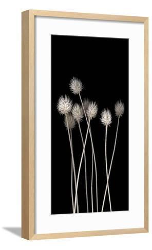 Dried Up-PhotoINC Studio-Framed Art Print