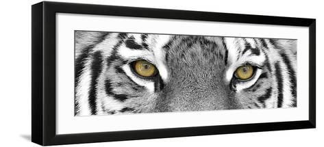 Tiger-PhotoINC Studio-Framed Art Print