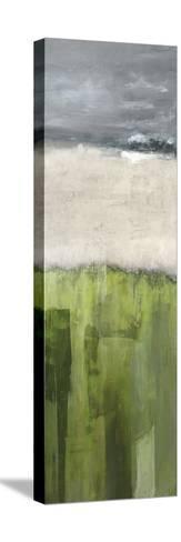 Strata - Colorado--Stretched Canvas Print